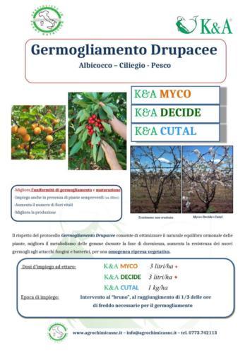 Protocollo  Germogliamento DRUPACEE  2020-1